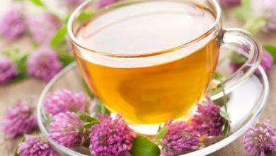 Photo of Sağlığa Faydası Pek Bilinmeyen Bitkisel Çaylar