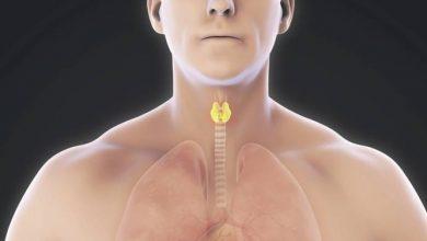 Photo of Tiroid Yetmezliği Belirtileri Nedir?